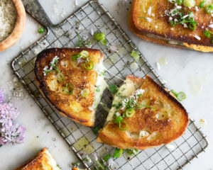 Herbed Fontina Grilled Cheese