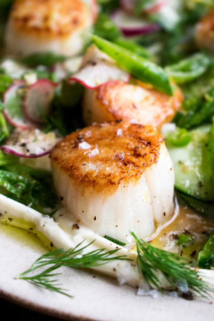 Scallops with Cucumber Salad